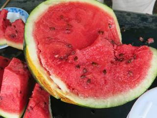 イベント - 夏野菜の収穫 7~8月