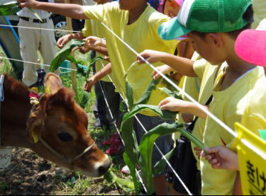 山梨県が推進する「レンタル牛バンク事業」への協力